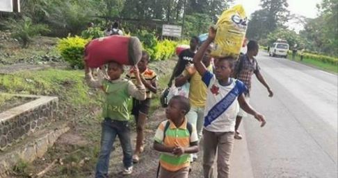 Photo of UN Says 160,000 Anglophones Have Been Displaced Since 2016