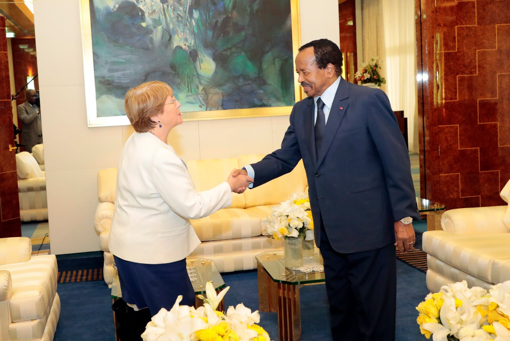 Photo of Press Release: Bachelet Welcomes Cameroon's Willingness To Cooperate To Tackle Human Rights Crises