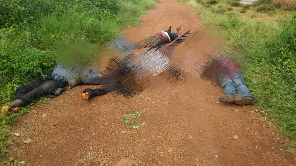 Photo of Cameroon Soldiers Kill 7 In Bali