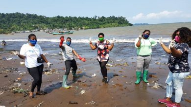 Photo of YALI West Africa, Partners With HYSACAM, Limbe I Council To Clean Downbeach Debris